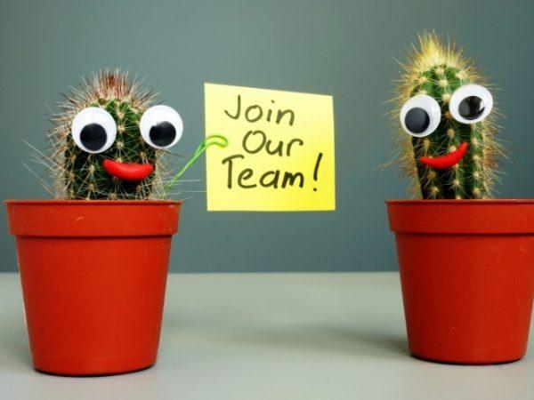 Afbeelding met hierop twee cactussen en de tekst join our team